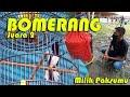 Dunia Hobi Aksi Kacer Bomerang Milik Paksumu Juara  Di Mega Latber Wijaya  Mp3 - Mp4 Download