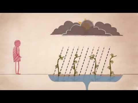 Resilience: Anticipate, organise, adapt
