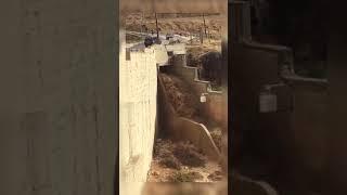 سيول وادي موسى
