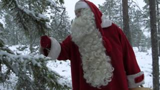 Der Weihnachtsmann ruft zum Naturschutz auf: Europäische Woche des Waldes