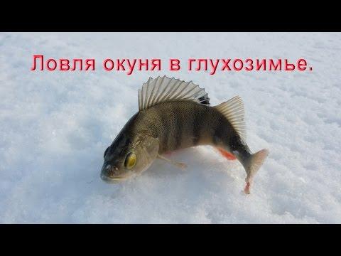 ловля красноперки в январе