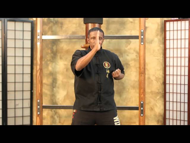 Wing Chun Siu (small) Lim (thoughts) Tauh (head) form
