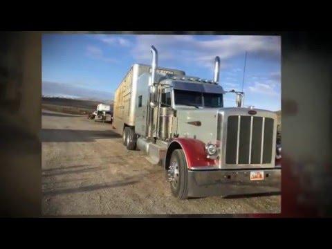 18 wheels (and a dozen roses) Kathy Mattea catttle trucking