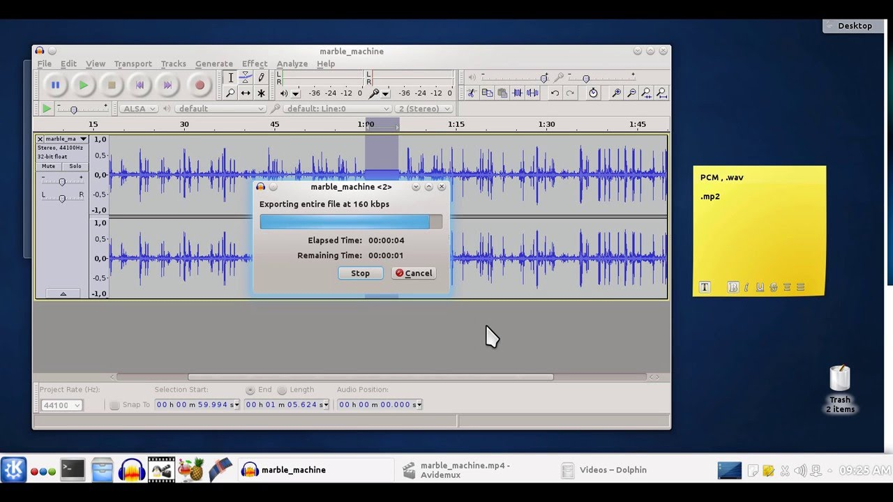 Remove audio from a part of a video in Avidemux and Audacity