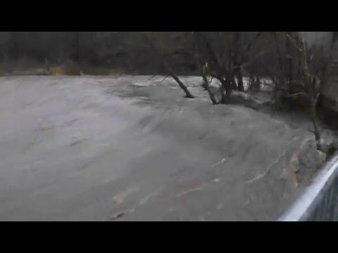 The raging river Derwent Lady steps Swalwell, tyne/wear