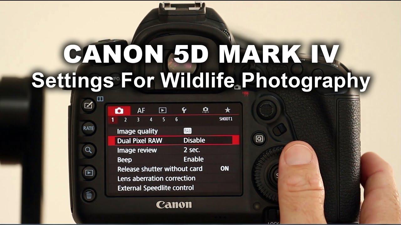 canon 5d mark iv manual pdf