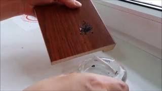 Чем деревянный подоконник Werzalit лучше пластикового? Тепловик(Сравнение пластикового подоконника и деревянного ДСП подоконника Werzalit: прочность, устойчивость к жару..., 2016-05-23T11:53:50.000Z)