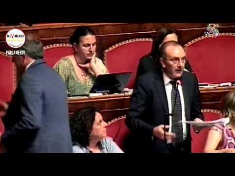Petrocelli m5s sui collaboratori parlamentari e su for Lavori parlamentari
