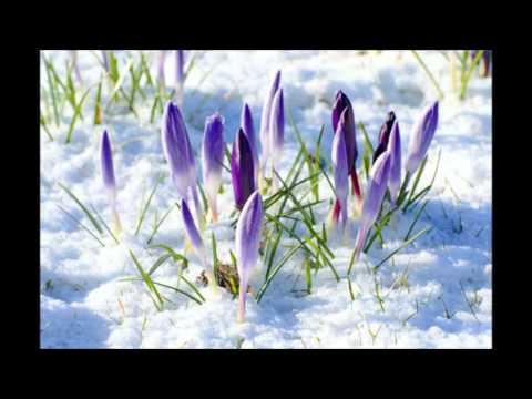 Last snows of Spring