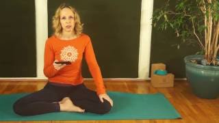 Namaste Yoga 306 Introduction to Spiritual Ecology Beginner Yoga Class