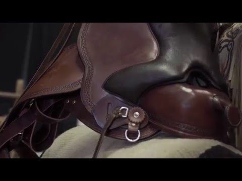 Shock absorption of the Saddle