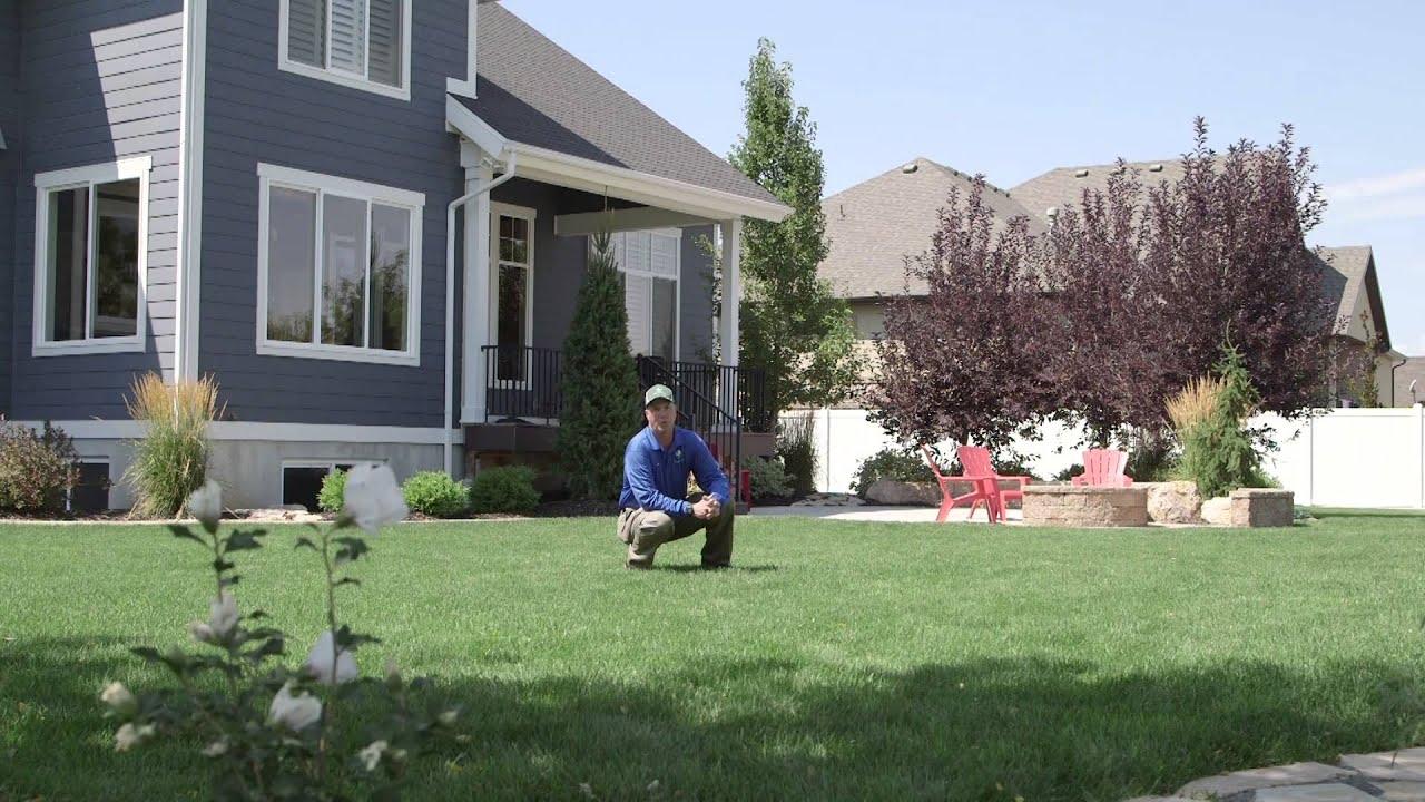 Inspirational Lawn Care Salt Lake City