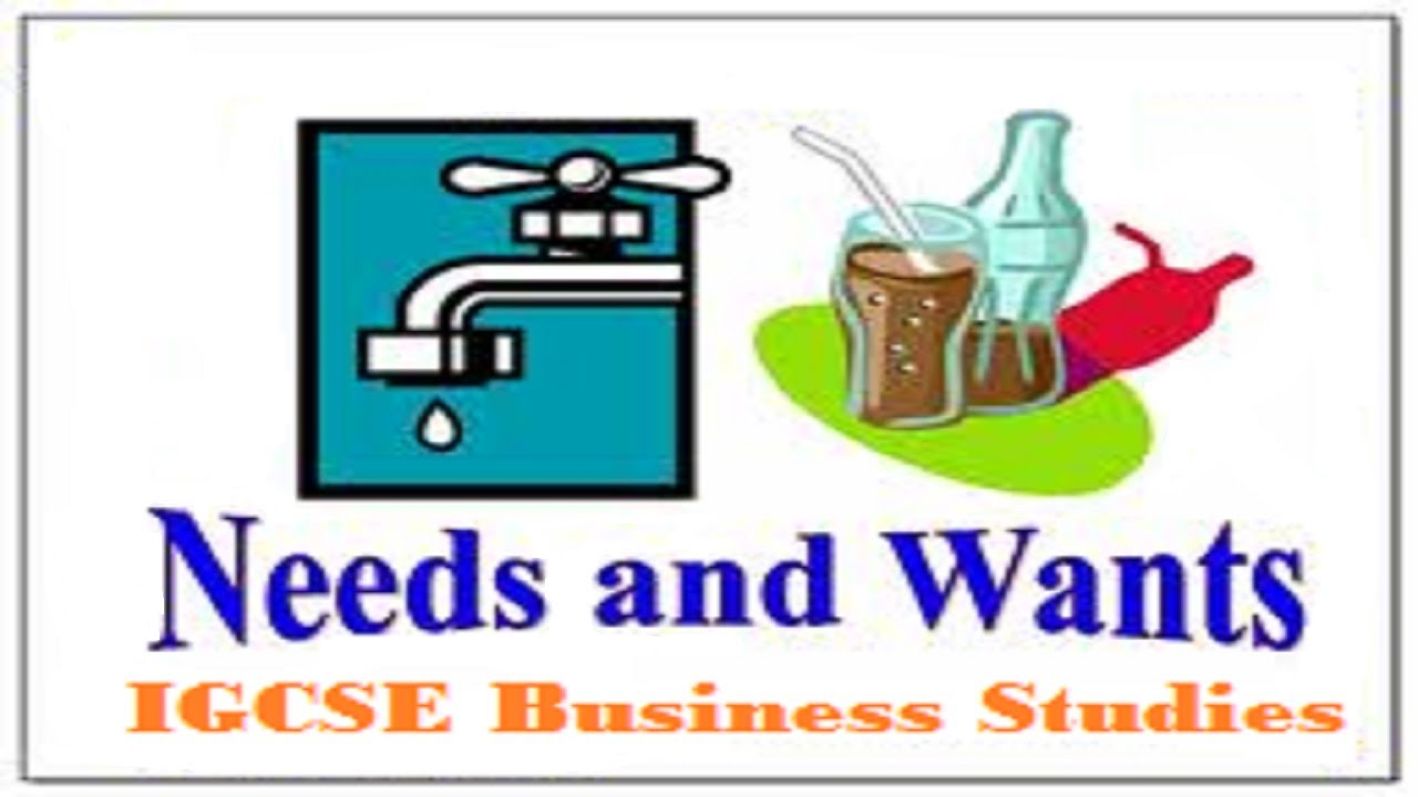 igcse business studies needs and wants youtube