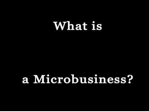 What is a microbusiness?