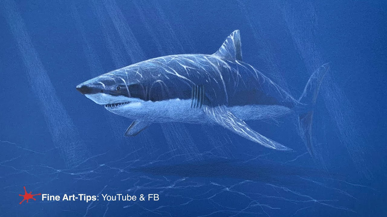 HOW TO DRAW A WHITE SHARK WITH COLOR PENCILS
