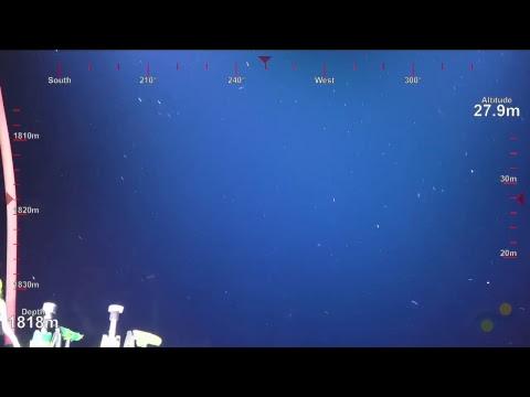 ROV SuBastian Dive 091- Mata Tolu West Rift - Underwater Fire