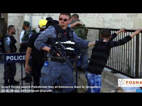 Your TV: Kali Rubaii: Palestinian Child Detention