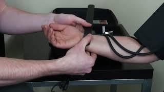 Демонстрация тренажера для обучения измерению артериального давления