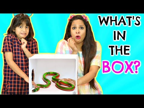 WHAT'S In The BOX Challenge    MyMissAnand -VS- ShrutiArjunAnand