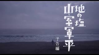 ろんぐ・ぐっどばい~探偵 古井栗之助~』などの森岡龍を主演に迎え、人...