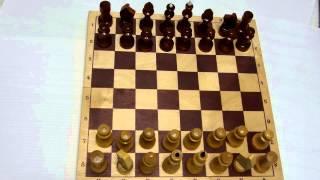 Шахматы для начинающих часть3