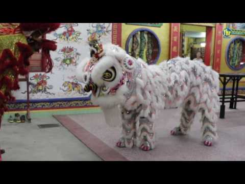CNY: Lion Dance