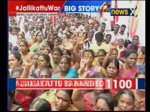 Jallikattu Ban: DMK begins state wide protest outside Collectors Office in Chennai