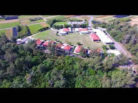 [4K] ネイチャー未来館 Drone Footage   okinawa islands Japan 沖縄 ドローン