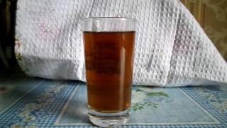 Чайный гриб,Комбуча!Уход за молодым грибом,полезные советы