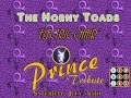 """watch he video of The Horny Toads: """"Electric Chair"""" Prince Tribute New Way Bar 7.30.16"""