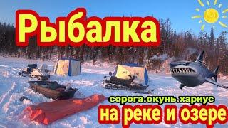 Рыбалка на озере и таёжной речке в Архангельской области 100км на снегоходе за 2дня