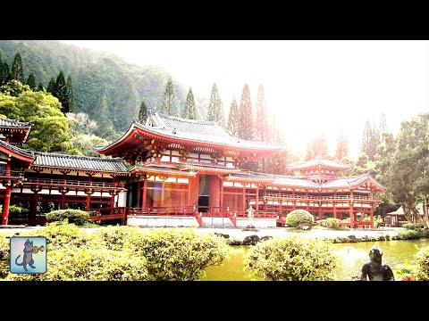 3 HOURS Best Traditional Japanese Music for Relaxing, Stress Relief & Healing ✪29