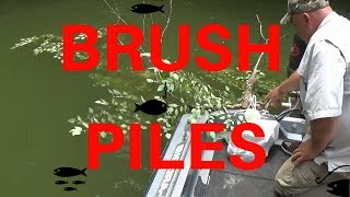 How To Build Brush Piles For Fish The EASY Way.