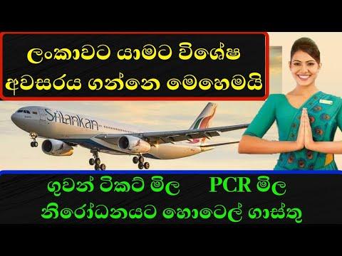 ලංකාවට යාමට විශේෂ අවසරය ගන්නෙ මෙහෙමයි | Ceylon Life | Airport News
