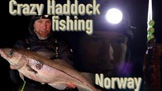 Crazy haddock fishing in Norway