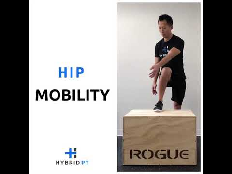 Hip Mobility Exercise