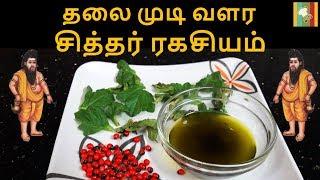 தலை முடி வளர சித்தர் ரகசியம் | Herbal Hair Oil Preparation in Tamil