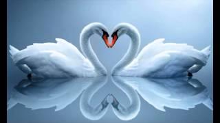 Потрясающая Самая Красивая Музыка для души*Сердце замирает!!!