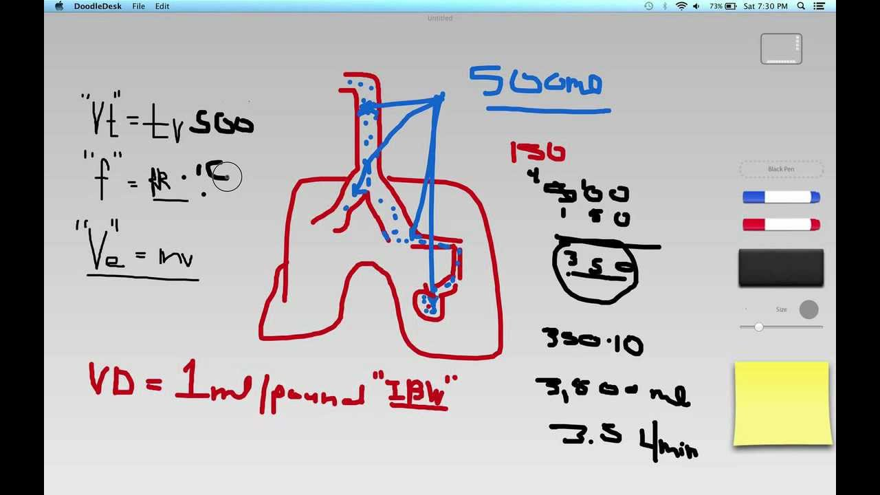 calculating alveolar minute ventilation - youtube