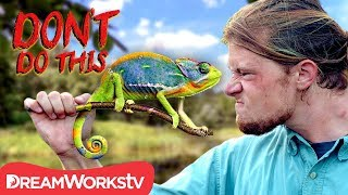Chameleon Almost Bites My Face! | DON'T DO THIS