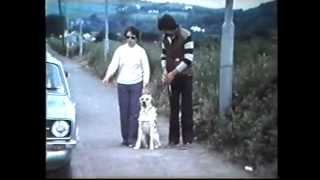 Cork Guide Dogs - Early Days [ Part - 2 ]