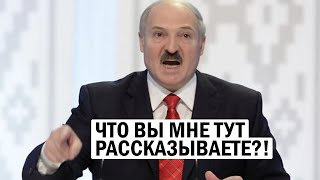 Лукашенко: что вы выдумываете?! Бацька психанул на совещании - работа есть! - новости, политика