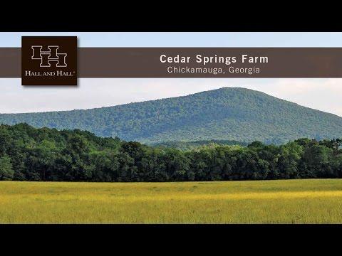 Cedar Springs Farm - Chickamauga, Georgia