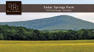 Cedar Springs Farm - Chickamauga, Georgia