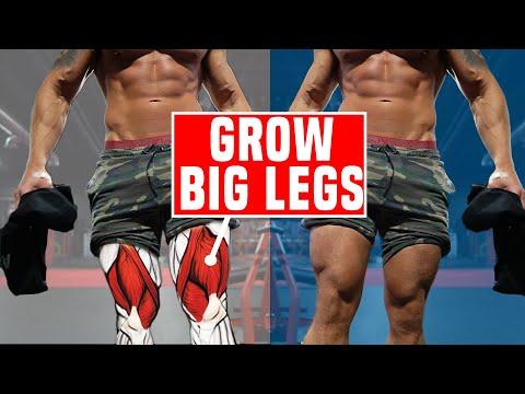 10 Leg Exercises For Building Big Legs Fast (SKINNY LEGS FIX!)