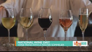 Celebrate National Wine Day with food and wine pairing quiz