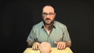 VSauce: Сознание