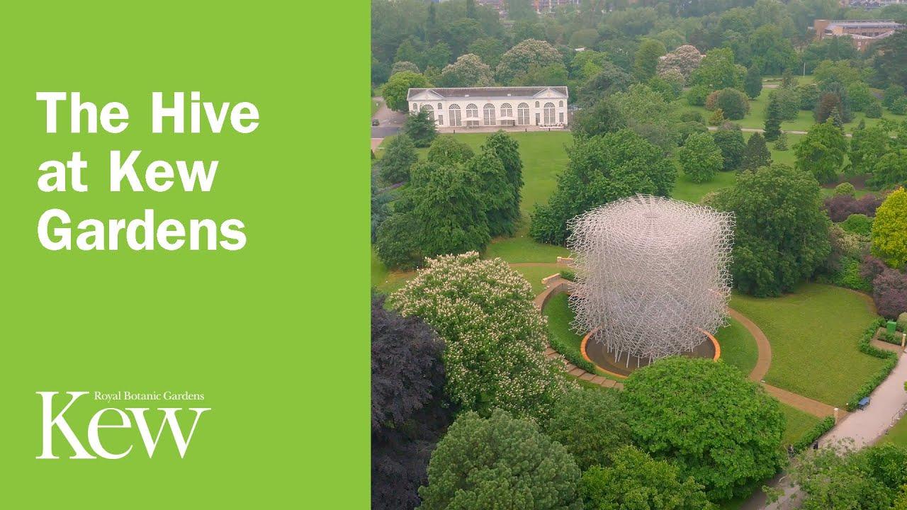 Kew Gardens e Richmond Park. I gioielli naturalistici di ...