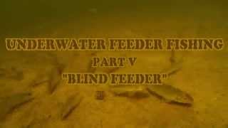 Underwater Feeder Fishing Part V. Подводный фидер Часть 5