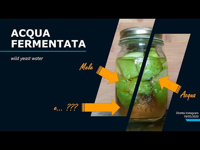 Facciamo un'acqua fermentata! (wild yeast water)